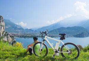 E-Bikes setzen neue Trends!