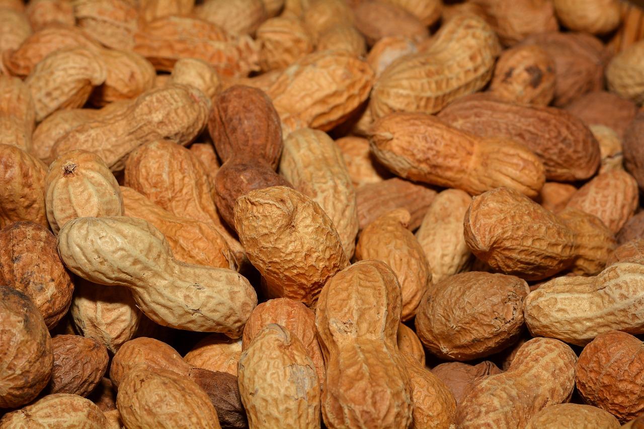 erdnüsse senken cholesterin