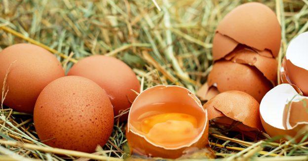 Hühnereier als Proteinquelle