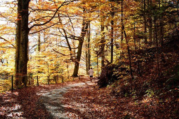 Sport Herbst