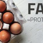 Sporternährung // FAQ Proteine