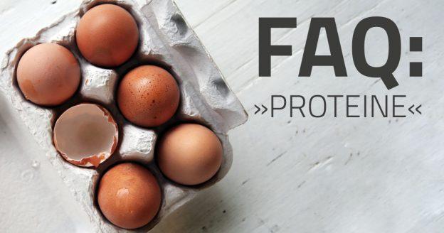 Häufig gestellte Fragen zu Proteinen