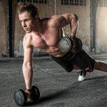 Muskelaufbau kompakt – Die besten Übungen für Schulter, Brust, Bizeps und Trizeps